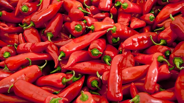 pepers_rood_sambal